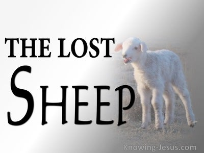 Matthew 15:24 The Lost Sheep (white)